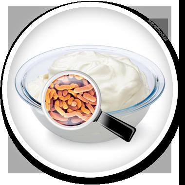 Probiotyki na zwiększenie odporności organizmu