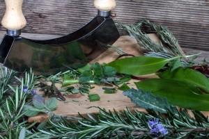 herbs-1529132_960_720